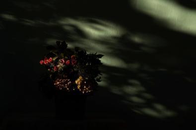 18:30 h - N. 9