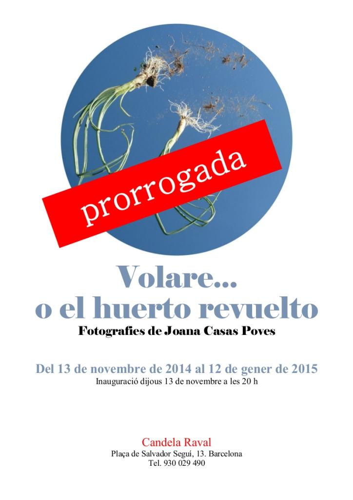 Volare_Candela_Cartell 2_prorrogada